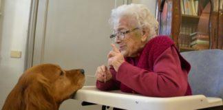 tagmedicina,Pet therapy