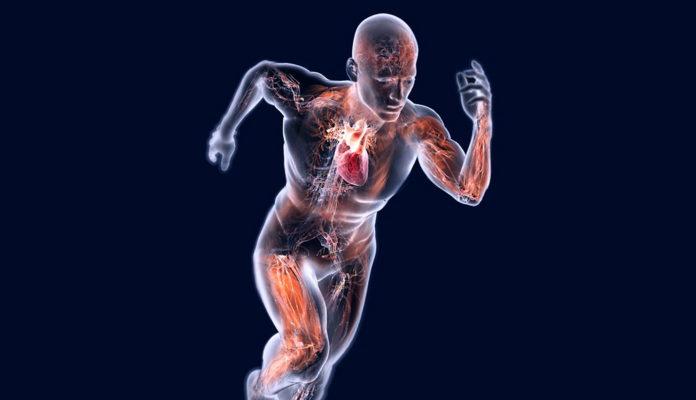 Tagmedicina, osteoporosi e attività fisica