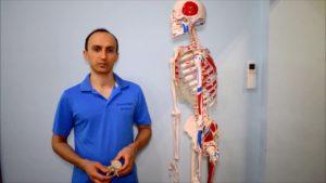 tagmedicina, artrosi e terapie