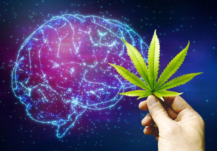 tagmedicina,cannabis