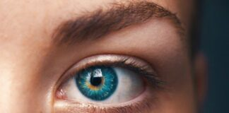 tagmedicina, retina