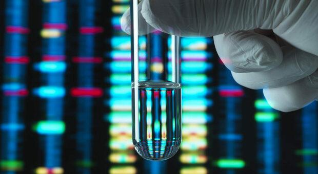 tagmedicina genotipo