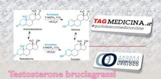 tagmedicina,testosterone