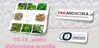 tagmedicina,flavonoide