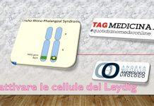 tagmedicina, leydig