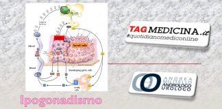 tagmedicina,primario